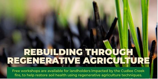 Rebuilding through Regenerative Agriculture